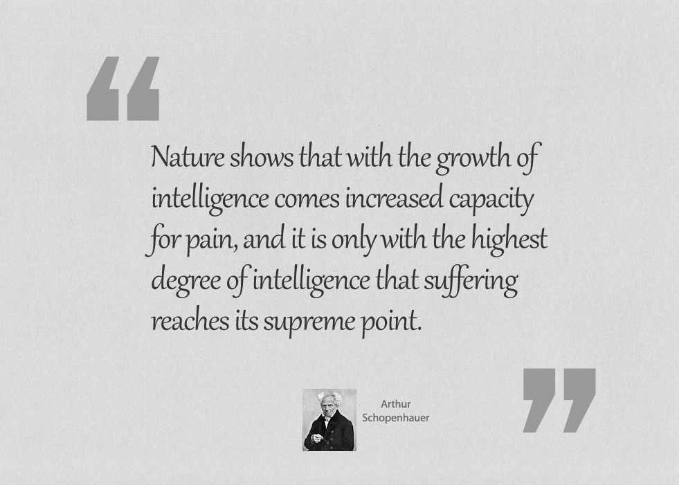 Nature shows that with the growth of intelligence
